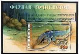 """Tajikistan.2018 Ovpt.""""Water 2018 -2028.  On Fish S/S: 500 - Tadjikistan"""