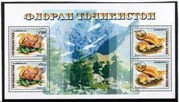 Tajikistan. 2018 Mushrooms(Flora) Ovpt. S/S Of 1999: 2x 0.20, 2x 0.30 - Tadjikistan