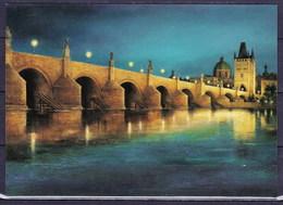Tchéque République 2008, Carte Postale CPH 8-1 - Postal Stationery