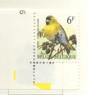 PIA - BEL - 1996 : Serie Corrente : Uccello  Siskin Degli Ontani - (Yv 2664) - Belgique