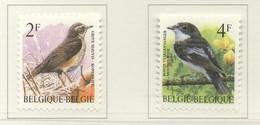 PIA  -   BELGIO  -  1996  : Serie Corrente - Uccelli . Grive Mauvis E Pigliamosce Nero -  (Yv  2646-47 ) - 1985-.. Oiseaux (Buzin)