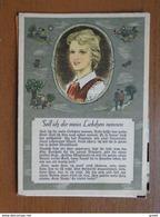 Doos Postkaarten (2kg670) Allerlei Landen En Thema's (zie Enkele Foto's) - Cartes Postales