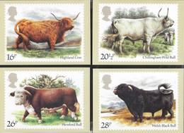 INGHILTERRA - CATTLE (HIGHLANDS COW) 1984 - 5 CARTOLINE  - EDIT. HOUSE OF QUESTA - NUOVE - Francobolli (rappresentazioni)