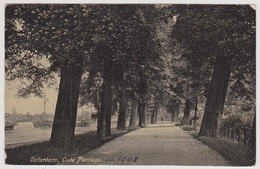 Rotterdam - Oude Plantage - 1908 - Rotterdam