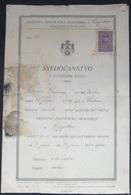 SVJEDOCANSTVO O ZAVRSNOM ISPITU   SVJEDODZBA SCHOOL REPORTS 1934 OSIJEK, KINGDOM SHS,  KINGDOM OF YUGOSLAVIA - Diplômes & Bulletins Scolaires