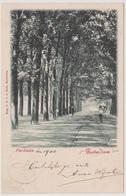 Rotterdam - Parklaan - 1900 - Rotterdam