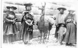 Amerique Du Sud - Indiens / 37 - Perou - Indios - Lama - Pérou