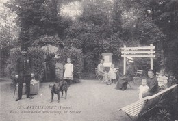 88 Mattaincourt Source Heucheloup - France