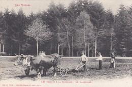 88 Les Vosges Le Labourage - France