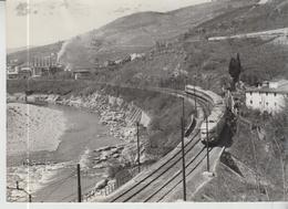 Treni Train Treno Fotografia Originale F.S. Treno E.TR. 300  In Una Ansa Della Roma - Firenze  Cm 18 X 13   F/p - Trains