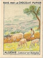 Image Chocolat Pupier Algérie Labour En Kabylie N°18 - Vieux Papiers