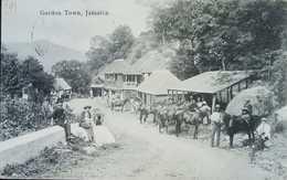 O) JAMAICA, RURAL LANDSCAPE COUNTRYSIDE-HORSES-CULTURE, GORDON TOWN  POSTAL CARD XF - Postcards