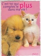 CPM  Thème Animaux Chat Avec Un Chien Cat Réf 2224 - Gatos