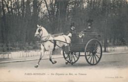 H210 - 75 - PARIS - Nos élégantes Au Bois - Un Tonneau - Petits Métiers à Paris