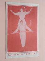 """Souvenir Du Trio """" ORSOLA """" Anno 19?? ( Voir / Zie Photo ) 17 X 10,5 Cm. ( Cirkus / Cirque ) Acrobaten / Koorddans ! - Autres Collections"""