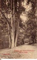 L 245- Forêt De Fontainebleau - Le Nid De L'Aigle - Fontainebleau