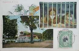 O) 1902 PERU, EXPOSITION PARK- ZOO -LION, POSTAL CARD, ADMIRAL MIGUEL  L. GRAU. XF - Peru