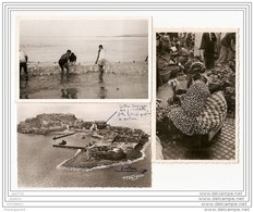 6297 AK /PC/ 3 X CARTE PHOTO/1011/SENEGAL/DAKAR MARCHANDE DE FLEURS/ILE DE GOREE/TANGER PECHE /TTB - Senegal