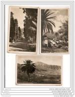4941 AK/PC/ 3 X CARTE PHOTO/858/TENERIFE/VILLA OROTAVA/LA PAZ/MOTIVODE FLEURS/ILE DE GOREE/TANGER PECHE /TTB - Tenerife