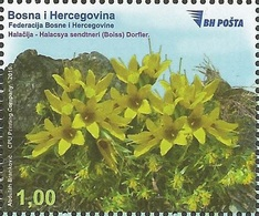 BH 2016-690 FLORA, BOSNA AND HERZEGOVINA, 1 X 1v, MNH - Sonstige