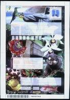 BRAZIL  Aerogramme, Southeast Region , Fruits, Hummingbird, Fish, Christ The Redeemer , Flowers - Postal Stationery