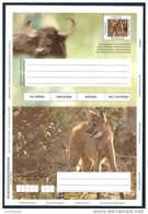 BRAZIL  AEROGRAMME  - AFRICAN BUFFALO AND MANED WOLF - Postal Stationery
