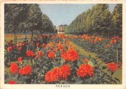 92-SCEAUX-N°156-D/0193 - Sceaux