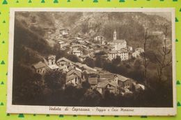 Cartolina Veduta Di Caprauna Poggio E Case Mezzone - - Cuneo