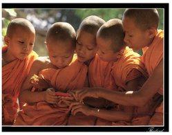 (444) Thailand - Young Apprentice Monks - Bouddhisme