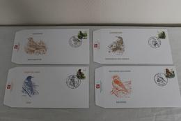 Série De 4 FDC - Oiseaux De BUZIN - Timbres N° 2918/21 - 1985-.. Birds (Buzin)