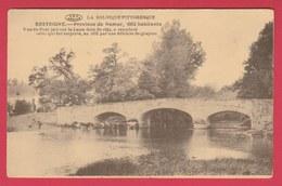 Resteigne - Vue Du Pont Jeté Sur La Lesse, Datant De 1842 ( Voir Verso ) - Tellin