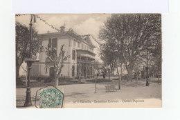 Sur Carte Postale Type Blanc Oblitéré Cachet Hexagonal Marseille Exposition Coloniale 1909. Vignette Exposition. (925) - Marcophilie (Lettres)