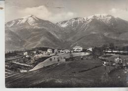 Amatrice Rieti Frazione Di Mosicchio 1952  Vg  F/p - Rieti