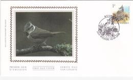 Enveloppe FDC Sur Soie - Oiseaux De BUZIN - Timbre N°2759 - Cachet Wilrijk - 1985-.. Birds (Buzin)
