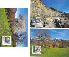 Liechtenstein 2004: Ammonit Seeigel & Haifischzahn (Ruggell)  Zu 1308-10 Mi 1365-67 Yv 1305-7 MK-Set 235 (Zu CHF 12.00) - Fossiles