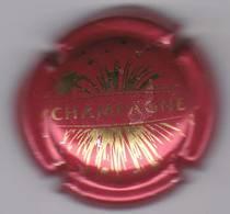 GENERIQUE N°764g - Champagne
