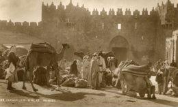 PAlESTINE (Israel) RPPC - Jerusalem Wheat Market - Palestine