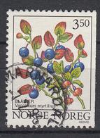 NOORWEGEN - Michel - 1995 - Nr 1175 - Gest/Obl/Us - Norvège