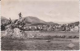 Pyrénées  Orientales :  BANYULS  Sur  MER   : L '  Ile  Petite - Banyuls Sur Mer