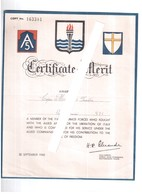UNITED STATES ARMY NORTH CERTIFICATE OF MERIT ITALIAN SOLDIERS GENIO FERROVIERI 1945 - Documenti