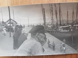 Douarnenez.photo Rigide Format Carte Postale 9*14 Vers 1950 Numérotée Au Dos 91-24 - Douarnenez