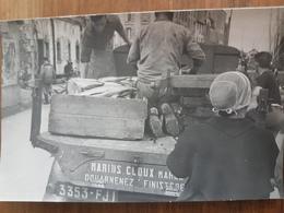 Douarnenez.industrie Du Thon,pêche.photo Rigide Format Carte Postale 9*14 Vers 1950 Numérotée Au Dos 91-19 - Douarnenez