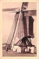 Kasterlee - Le Moulin Déploie Ses Ailes (molen, Animation) - Kasterlee