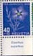 """Schweiz Suisse Svizzera: Pro Juventute 1949 Zu 132 Mi 544 Yv 496 ** MNH & Tab Latinum """"Dianthus Superbus"""" (CHF 11.00) - Other"""