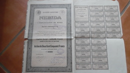 Action De 250 Francs NEBIDA - Actions & Titres