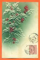 "CPA En Relief Chromo "" Branche De Houx "" - Plantes Médicinales"
