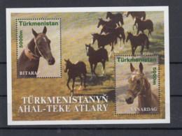 Türkmenistan (BBK) Michel Cat.No. Mnh/** Sheet 10 Horses - Turkménistan