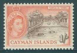 CAYMAN ISLANDS - MLH/*. - 1953-1959 - TURTLE IN CRAWL - Yv 150 -  Lot 18408 - Grande-Bretagne (ex-colonies & Protectorats)