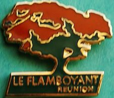 HH 381......ECUSSON..... DOM TOM ET AUTRES ILES..      LA REUNION.............LE  PLAMBOYANT - Badges