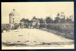 Cpa Du 33  Pauillac Château Latour -- Vendangeurs Se Rendant Au Travail      YN34 - Pauillac
